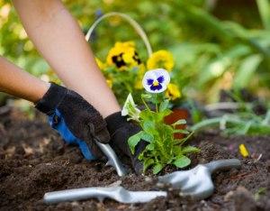 clx-gift-guide-gardening-de