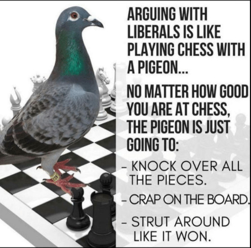 arguing-with-liberals-is-like-playing-chess-with-a-pigeon ...